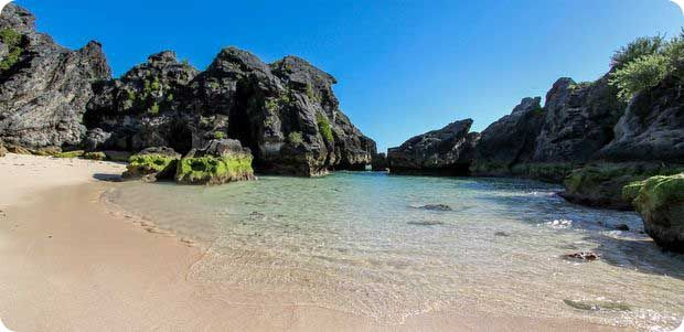 r Jobsons Cove Bay Beach Bermuda