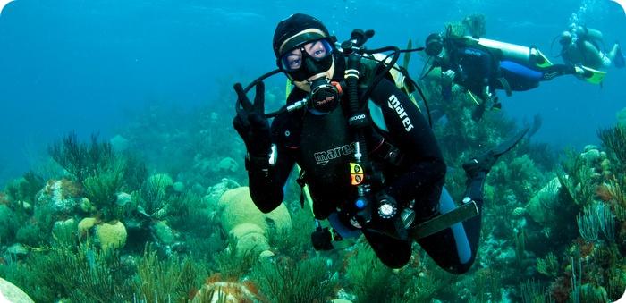 scuba in bermuda by sergey