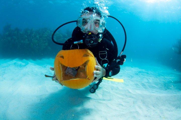 Bermuda Underwater Halloween by Sergey Goncharov (11)
