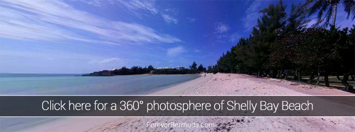 Shelly-Bay-Beach-360-degree-view