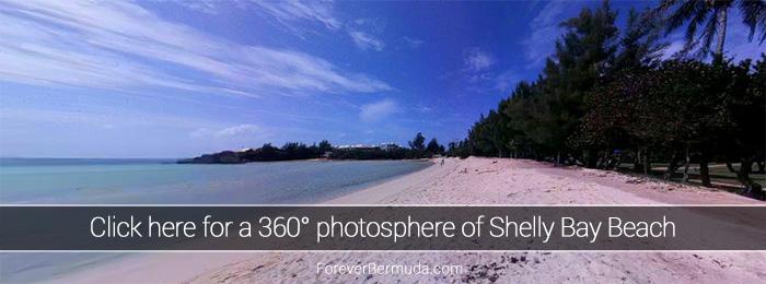 Shelly-Bay-Beach-360-degree-view