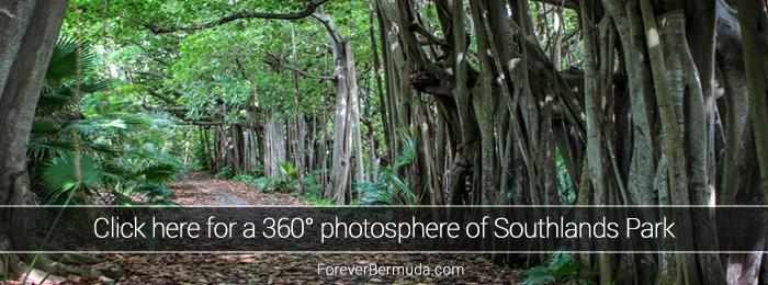southlands-park-360