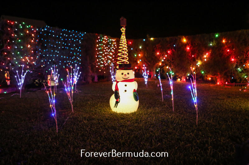 Bermuda Christmas, December 2014-1