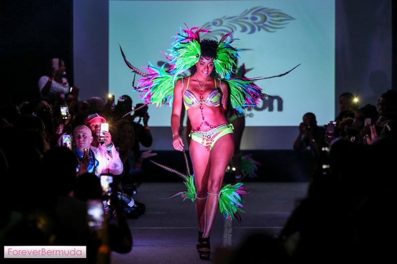 Bermuda Carnival Heroes Weekend Launch Nov 2015  (9)