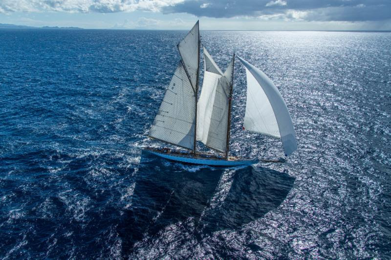 Eleonora under sail. Photo by ELWJ Photography